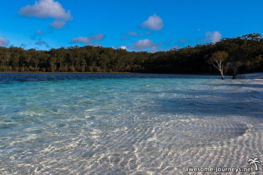 Australien_FraserIsland_LakeMcKenzie_3