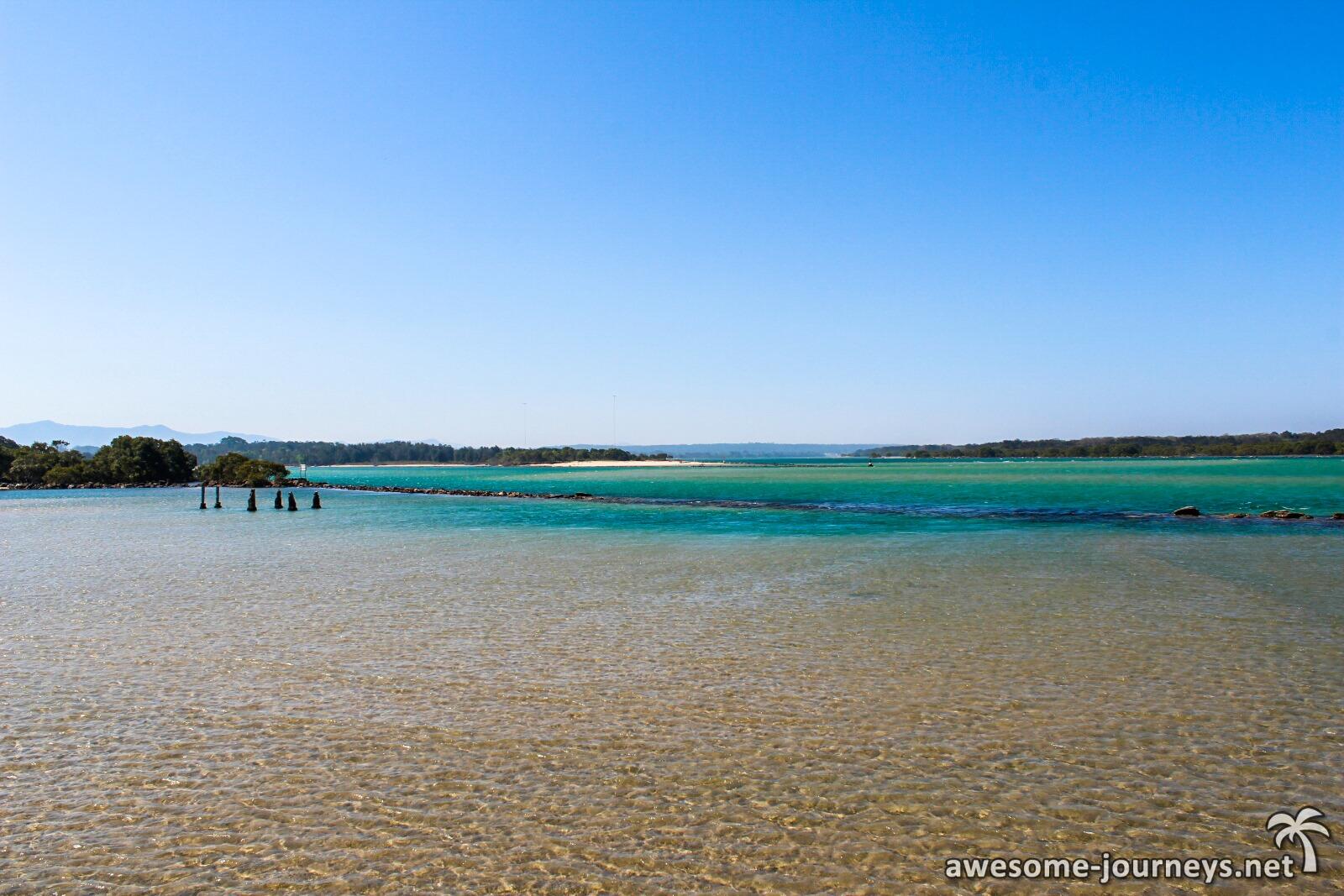 australien_dorrigo_nationalpark_urangaboardwalk_1