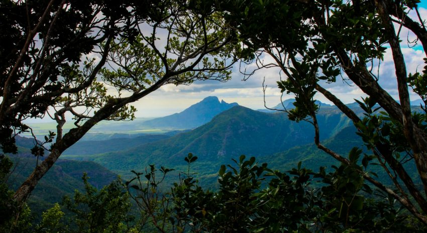 mauritius-black-river-gorges_viewpoint_2