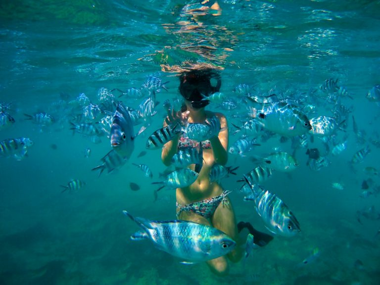 Blue Bay Marina Park - Things to Do in Mauritius