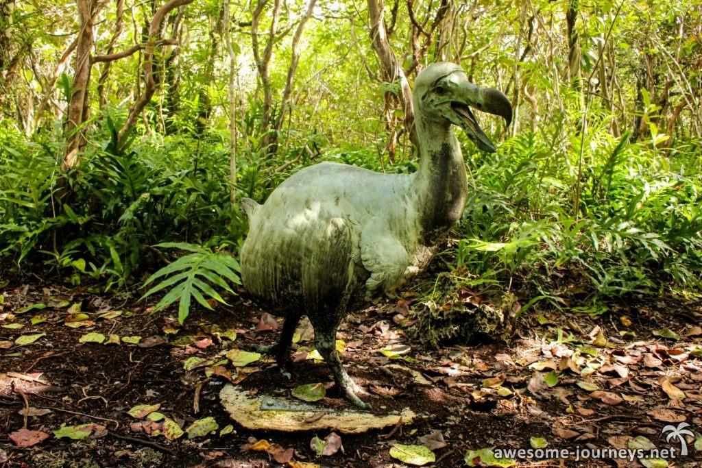 Nachbildung des ausgestorbenen Dodos