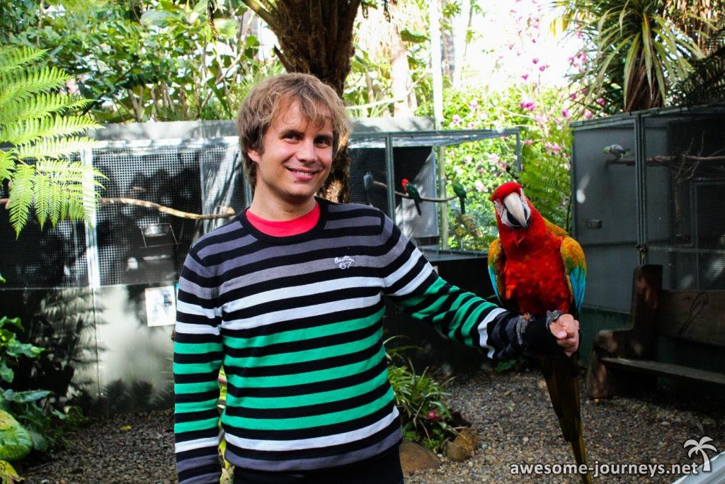 Markus mit Elmo