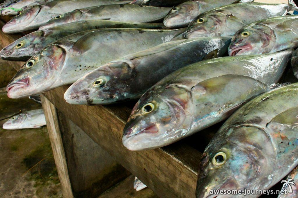 seychelles_praslin_fish-market_2