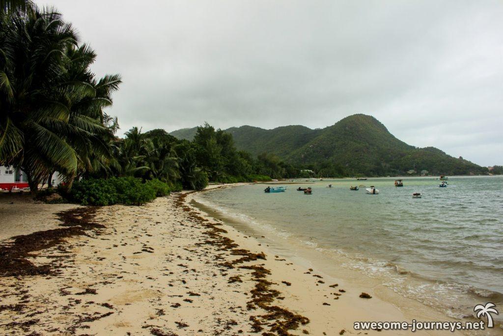 Grand Anse im Juni