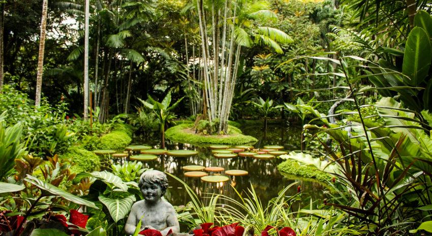 singapur_botanischer-garten_6