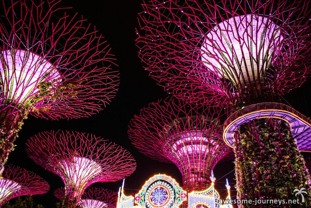 singapur_sightseeing_supertree-grove_2