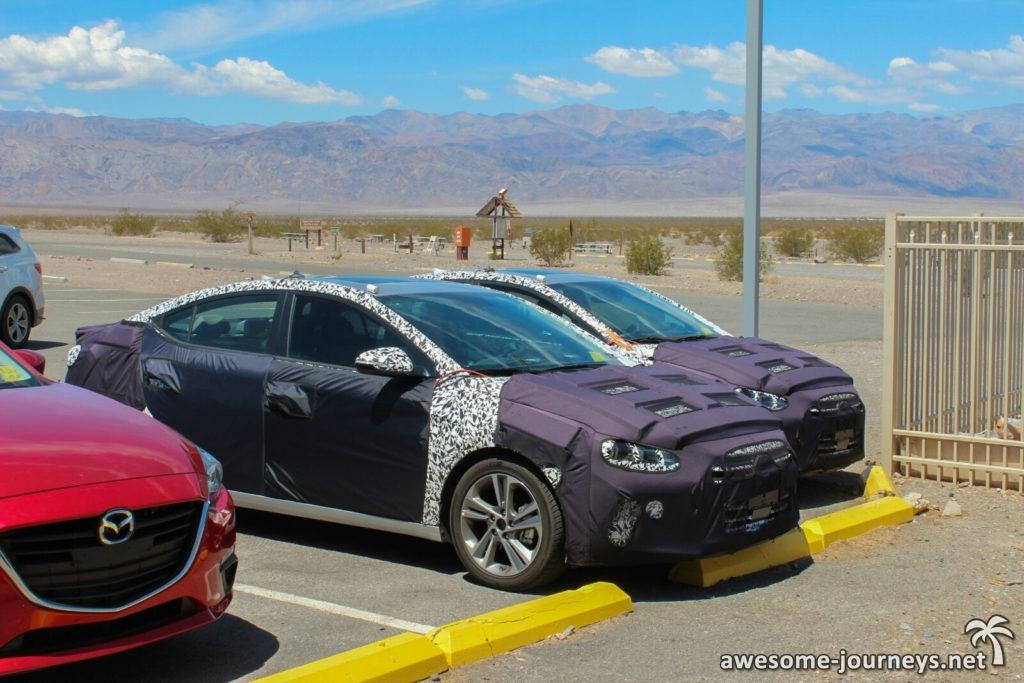 Erlkönige im Death Valley