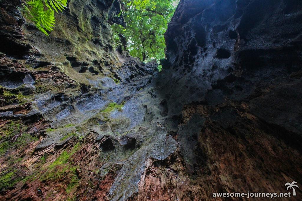 usa_eureka_zigzag-trail-6